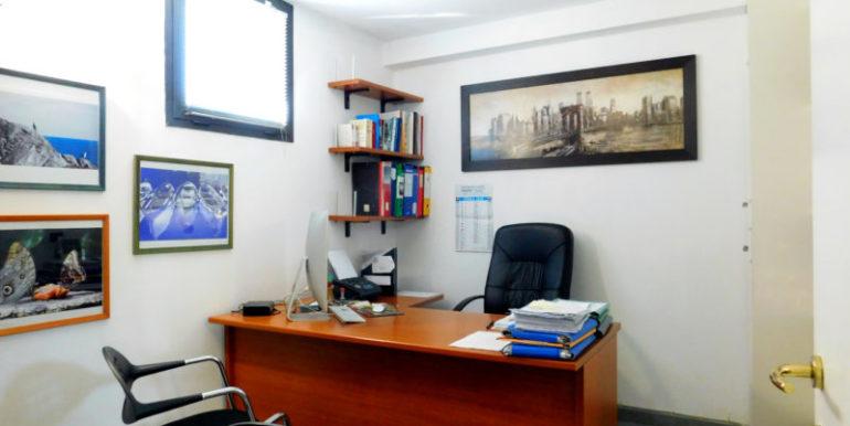 studio no 6